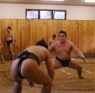 Exercice de butsukari